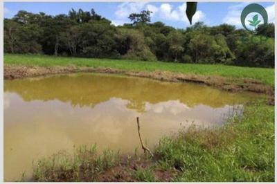 Autorização para intervenção em área de preservação permanente