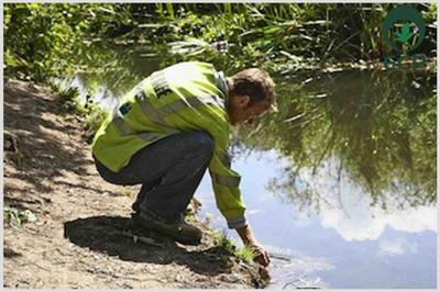 Empresas de consultoria ambiental em sp