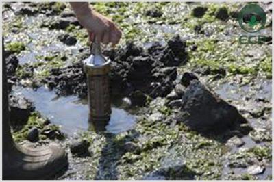 Investigação detalhada passivo ambiental