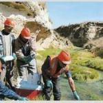 Empresa de estudo de impacto ambiental