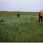 Estudo de impacto ambiental sp