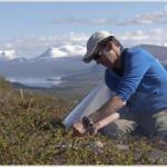 Investigação confirmatória de passivo ambiental