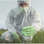 Investigação e remediação de áreas contaminadas