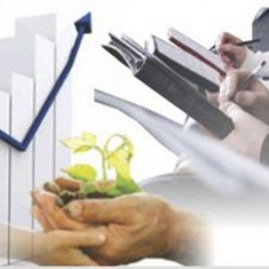 Consultoria e auditoria ambiental